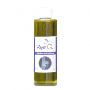 Phyto'G Solution douleurs articulaires 250ml