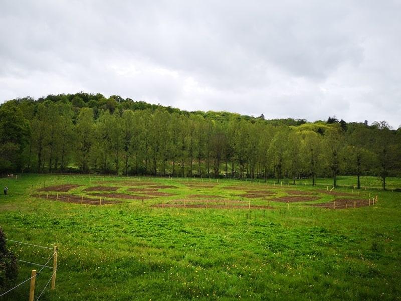 Solibio puériculture à Solignac