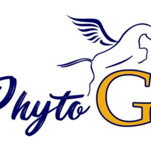 Phyto'G - Produit Equin